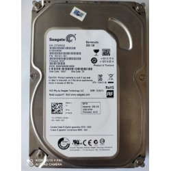 Dysk Seagate 250GB *0400